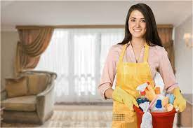 What Does It Take to Become a Pro Maid?